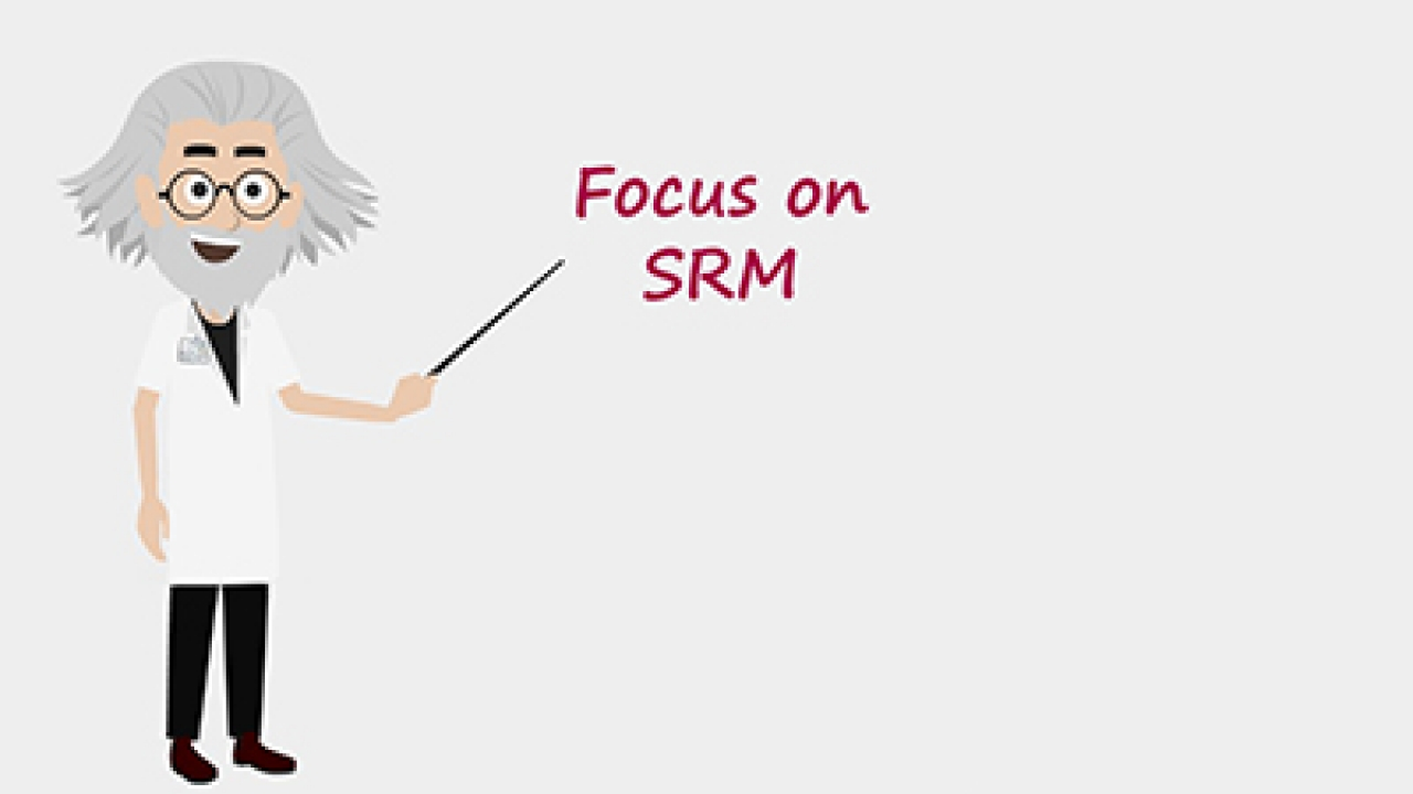 Focus on: SRM