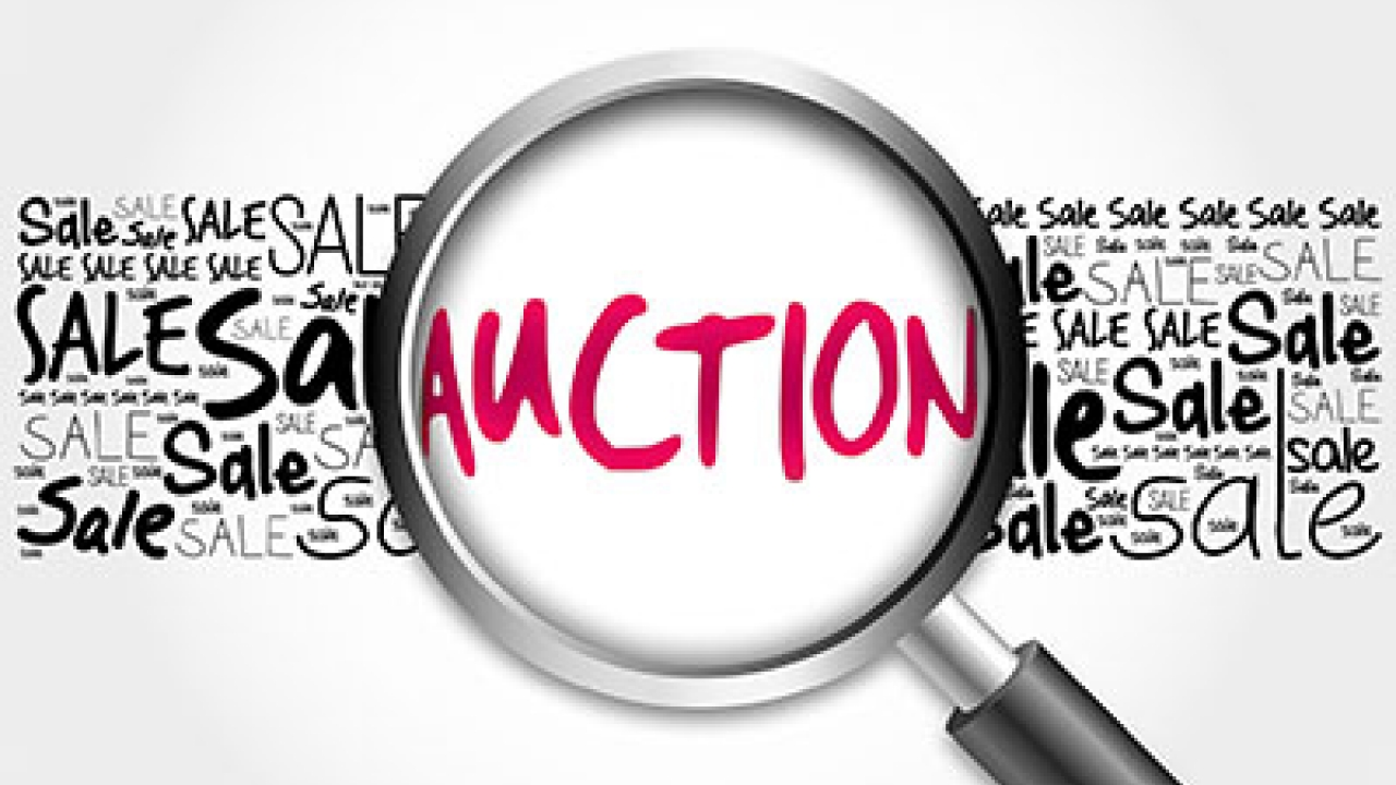 eAuctions: Why and how?